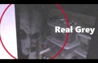 REAL GREY ALIEN Caught on Tape Behind Bus