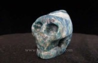 Dolphin Crystal Skull Part 2 Prophecy,Dolphins and Skulls