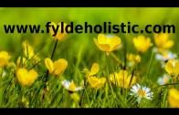 Mind, Body, Spirit Holistic Healing