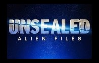 Unsealed Alien Files S02E14.The World Grid